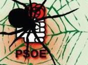 eficiente pegajosa tela araña socialista Andalucía