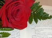 Sant Jordi Internacional Libro