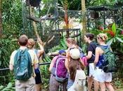 ¿Qué significa soñar zoológico?