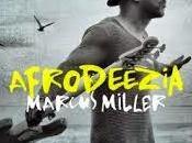 Marcus Miller Afrodeezia (2015) poder fusión