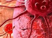 Científicos transforman células cáncer inofensivos glóbulos blancos