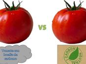 Huella Carbono tomate Almería: buscando responsables
