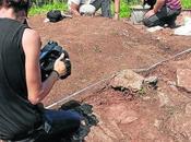Arqueólogos asturianos lamentan nuevo reglamento Patrimonio regule ayudas excavaciones