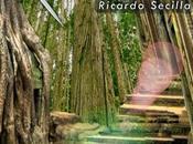 Navegante Eternidad Ricardo Secilla
