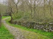 Caminos piedras......