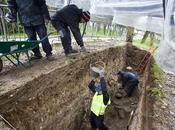 excavaciones entorno Castillo Burgos sacan múltiples restos medievales