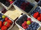 Recetas domingo: frutos rojos