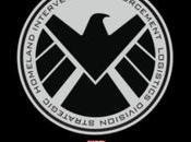 Adrianne Palicki Nick Blood serán protagonistas spin-off 'Agents SHIELD'.