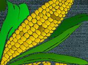 caminos maíz