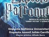 Orquesta Universitaria presenta mágico concierto