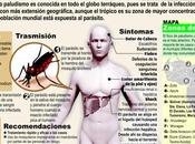 Invertir futuro, vencer malaria