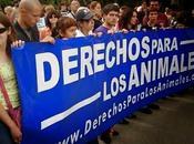 """Andrés Cameselle """"Una nueva perspectiva activismo derechos animales"""""""