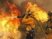 Internacional Combatiente Incendios Forestales