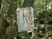 Aokigahara, bosque suicidas japoneses