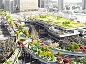 MVRDV gana concurso para construir jardín elevado Seúl