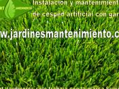 Instalación mantenimiento césped artificial garantía