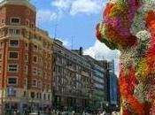 Bilbao, capital donde traducción imprescindible
