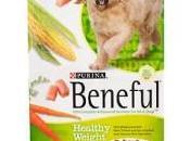 Este alimento marca famosa para perros resultado mortal, conócelo