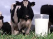 leche recomendada requerida médicos