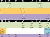 Calendario Selección Mexicana verano 2015 Copa América