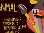 Cantando animal, Mayo (Madrid)