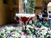 Corpus Christi l'ou balla