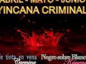 Balance mayo yincana criminal