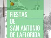 Fiestas antonio florida 2015