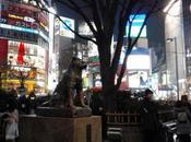 Tokio: perro, cruce, monte