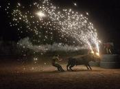 """Santa Fiesta"", documental sobre muerte animales fiestas españolas."