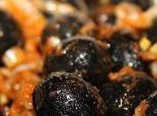 Aceitunas negras aliñadas