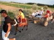 Crean plataforma digital información para agricultores familiares