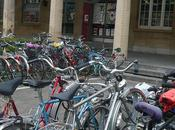 Bicicleta: fuente empleo salud