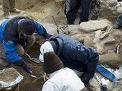 España: arqueología herida muerte