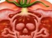 historia completa Monsanto (2/2)
