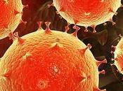 Vacuna experimental prepara sistema inmune contra