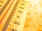 Cómo actuar durante calor