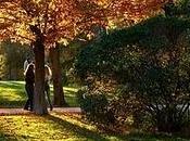 Cuánto tardan hojas...?