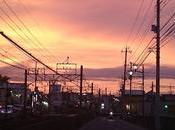 Dragon Ball Super todo poco Japón