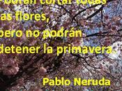 Pablo Neruda: luces sombras