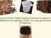 #Ecochiquillada