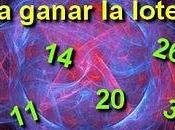 revelación números para ganar lotería