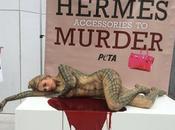 PETA HERMÈS