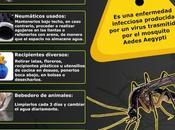 Forma prevenir dengue#salud#enfermedad#infografía