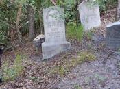 mensajes Haunted Mansion