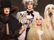 Cosmetic Nueva Colección Haute Dogs