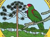 Reserva Natural Estricta Antonio mantiene sector intacto flora nativa.