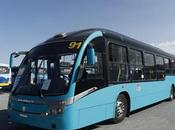 operación autobuses metros Luis Potosí
