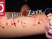 #cut4zayn Entendiendo auto-mutilación