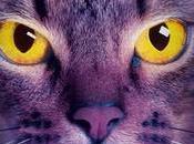 gatos guerreros nueva profecía Medianoche ERIN HUNTER